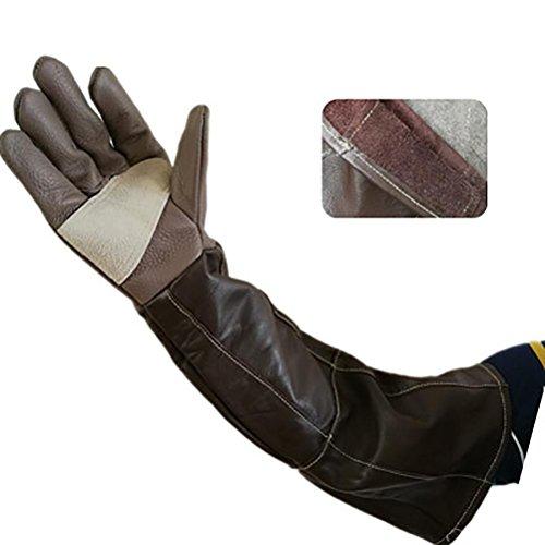 DAN Animal Handling Anti-Biss/Kratzer Handschuhe für Hund Katze Vogel Schlange Papagei Eidechse Wildtiere Schutzhandschuhe -