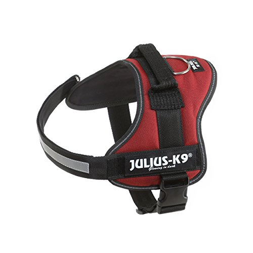 Julius-K9, 162BOR-0, K9-Powergeschirr, Größe: 0, kastanie