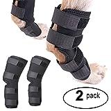 Zunea Dog canine posteriore gambe Hock brace comune 2pezzi HIND Leg Wrap Protector e extra supporto, gamba Hock misto manicotto a compressione per ferita infortuni e slogature guarigione di artrite
