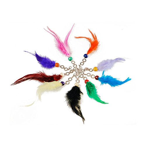 Neotrim Feather Keyring Fobs Pairs, for Decoration, Costume Party, Scrapbooking. With Wood Beads and Metal Rings Lobster Clasp. 8 Stunning Colours.