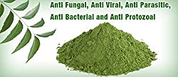 100 % Pure Herbal & Natural - Neem Leaves Powder - 100 gms - Organic and Chemical Free Skin Cleanser