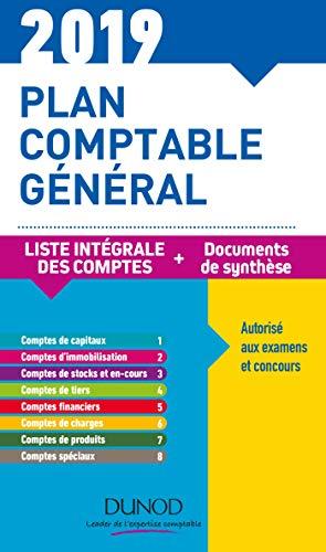 Plan comptable général 2019 - 23e éd. - Plan de comptes & documents de synthèse: Plan de comptes & documents de synthèse (dépliant séparé) par Charlotte Disle