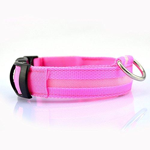 Ericoy LED Halsband Hundehalsband Leuchtband Leuchtschlauch Hund Leinen Sicherheitshalsbänder