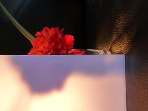 Plaque en Polycarbonate 1000 x 600 x 3 mm verre opale avec une transmission lumineuse 30%