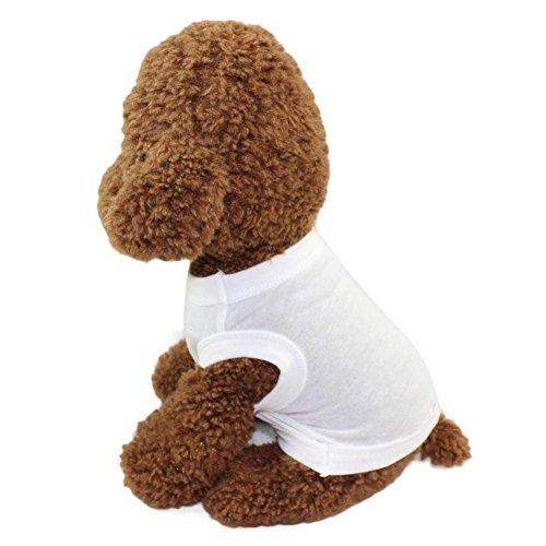 er Hund Kleidung Einfarbig Weste t-shirt Kleine Welpen Kostüm Baumwolle (M, Weiß) (Mais Hund Kostüme)