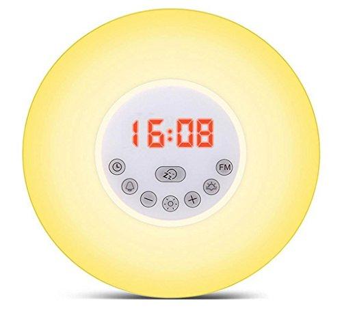 Denise Lamb Sonnenaufgang Wecker Wake Up Licht Sonnenaufgang Simulation Wecker mit Natur Sounds, FM Radio, Touch Control und USB Ladegerät (Casio Digital Uhr Wand)