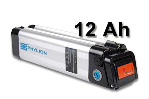 Maratron Akku XH259-10J für E-Bike Pedelec 24V 12Ah für u.a. Phylion,MiFa, Rex, Prophete (SF)