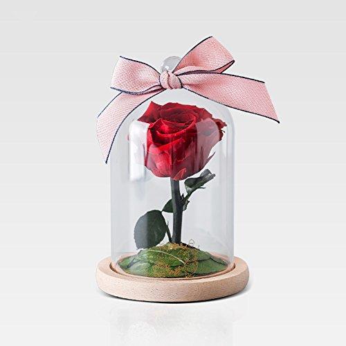 Rose séchée,Boîte de cadeau fleur éternelle Ornements de verre Fleurs Décorations de mariage Créatif Le jour de noël-B 12x18cm(5x7inch)