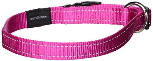 Rogz Collar de perro reflectante, tipo cinturón, de 1,9 cm