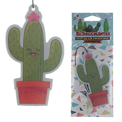 Funky Cactus Design Lime Scented Air Freshener : everything £5 (or less!)