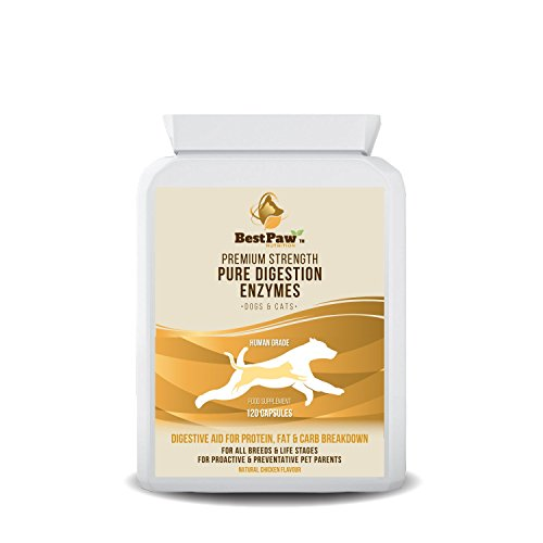 Best Paw Nutrition - Probiotikum für Hunde und Katzen zur Stabilisierung der Darmflora und bei Durchfall - 120 Tablets