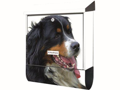 KlebeSpatz® Motiv Wand bzw Stand Briefkasten mit Zeitungsfach Zeitungsrolle Premiumline mit Zeitungsrolle Bernasennen Hund