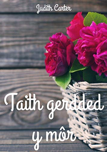 Taith gerdded y môr (Welsh Edition) por Judith  Carter