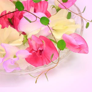 10ml-sweet-pea-fragrance-oil-candle-making-home-fragrancing