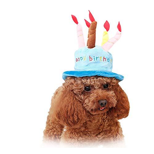 Fliyeong Niedliche Haustier Kuchen Hut Neuheit Kuchen Hut Happy Birthday Cup Haustier Kuchen Cup Kostüm Hut Für Geburtstagsfeier Oder Kunden Cosplay Blau