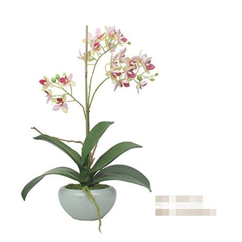 WRXXHZHR Phalaenopsis Künstliche Blume Chinesischen Stil Wohnzimmer Wohnkultur Vergossen Set Rosa 25X15X40Cm