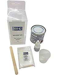 BlueGee Gelcoat Repair Kit - Clear or White - 100g Clear