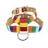 Sanwood Brustgurt für Hunde und Katzen, zum Trainieren, Walken, Joggen
