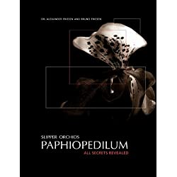 Slipper Orchids, Paphiopedilum: All Secrets Revealed