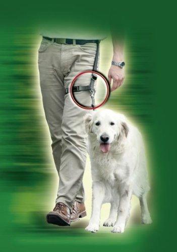 Karlie-Arnés de Pierna para Caminar Perfectamente y con Seguridad con el Perro,...