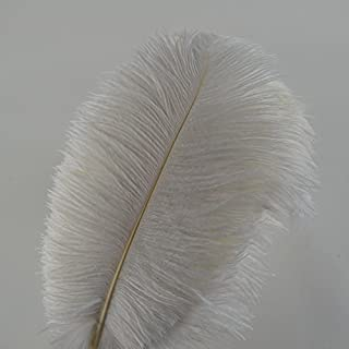 Lot de 10 plumes d'autruche Creny de 30 à 35 cm pour décoration d'intérieur ou mariage, blanc