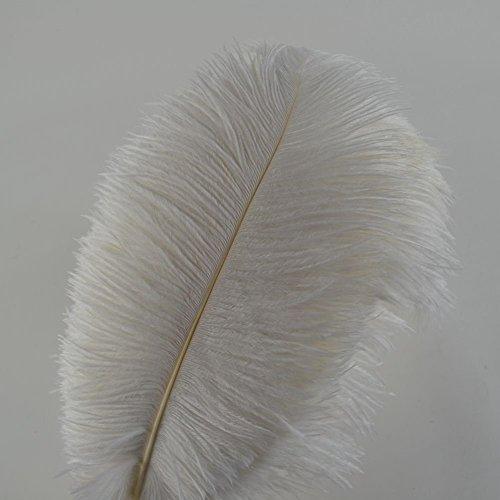 10Pcs Straußenfedern 12-14Inch (30-35cm) Für Haus Hochzeitsdekoration bietet(weiß)