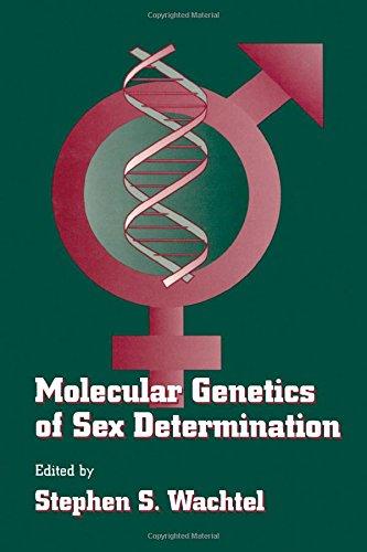 genetics-sex