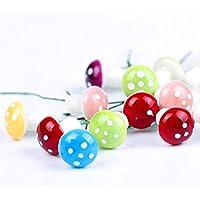 sungpunet 60piezas Juego de decoraciones de jardín miniatura de hada, setas