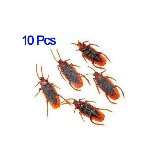 dcolor-10-fake-roaches-prank-novelty-cockroach-bugs-look-real