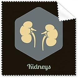 Body Innere Organe Nieren Gläser Tuch Reinigungstuch Handy-Display von 5x Geschenk