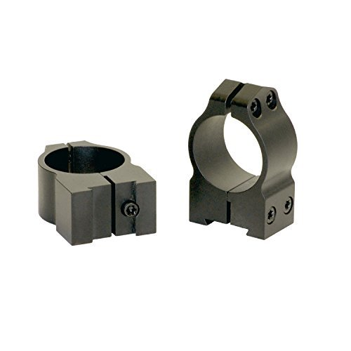 Warne 1 inch CZ Permanently Attached - Medium Matte Ring by Warne