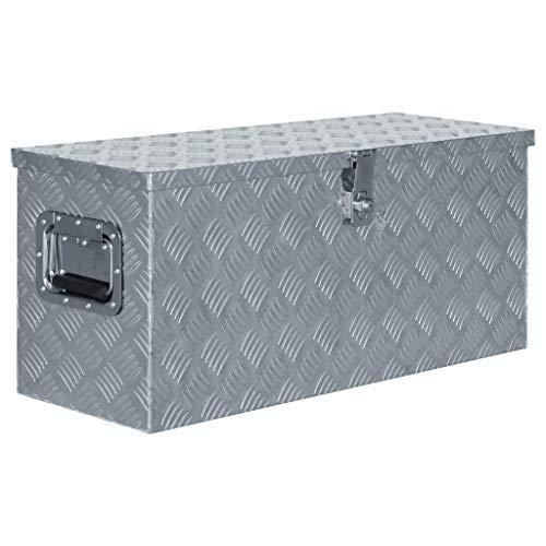 vidaXL Boîte en Aluminium Argenté Outils Coffre de Rangement Caisse à Outils