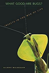 What Good Are Bugs?: Insects in the Web of Life