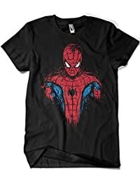 3012-SpiderMan - Daft Spider (Soulkr)