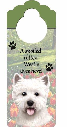 E&S Pets Holzschild A Spoiled Rotten Westie Lives Here, mit künstlerischem Foto, 25,4 x 10,2 cm, kann an Türknöpfen oder überall im Haus aufgehängt Werden -