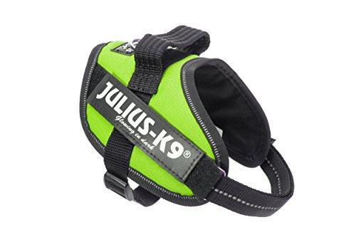 Julius-K9, 16IDC-KW-MM, IDC-Powergeschirr, Hundegeschirr, Größe: Mini-Mini, kiwi grün