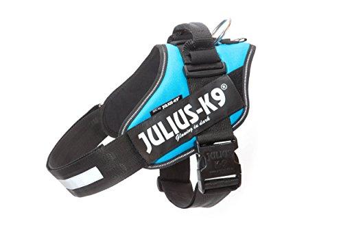 Julius-K9 16IDC-AM-1 IDC Powerharness, Dog Harness, Size 1, Aquamarine