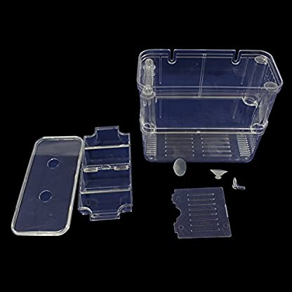 High-Transparent Self-Floating Multi-Function Fish Floating Fish Aquarium Hatchery Hatchery Box Double Layer Fish Tank… 3