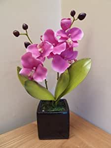 UK-Gardens - Orchidea rosa artificiale in vaso di ceramica quadrato nero, 34 cm, adatta per interni