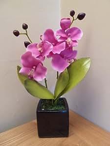 UK-Gardens - Orchidea rosa artificiale in vaso di ceramica quadrato nero, 34 cm, adatta per interni