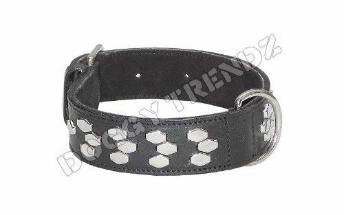 Artikelbild: Avon Pet Products Sechseck chrom Nieten Leder Hundehalsband, 71cm, schwarz