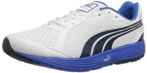 Schuhe Order Pre (PUMA Descendant v1.5 187287 Herren Laufschuhe, Weiß (white-insignia blue 04), EU 44 (UK 9.5) (US)