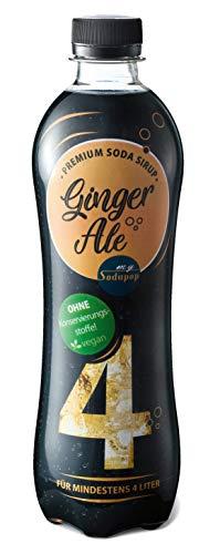mySodapop Premium Soda Sirup - Ginger Ale