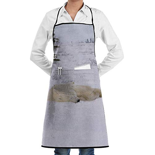 personalized aprons Static Wide Shot Then Zoom in to Polar Bear Sow and Cubs Sleeping R3lmfa0nu F0000 Aprons Bib for Mens Womens Paint String Adjustable Adult Kitchen Waiter Schürzen mit Taschen - Paint Zoom