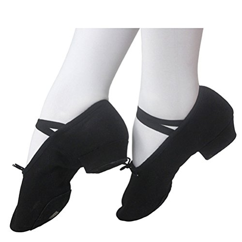 Zhhlinyuan Womens Fashion Canvas Ballet Dance Shoes Adult Practice Shoes 3 Colors Black