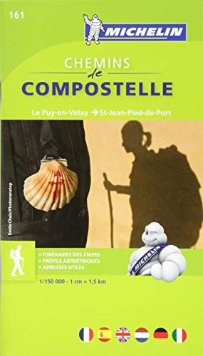 Carte ZOOM Chemins de Compostelle - Le Puy en Velay - St Jean Pied de Port par Collectif Michelin