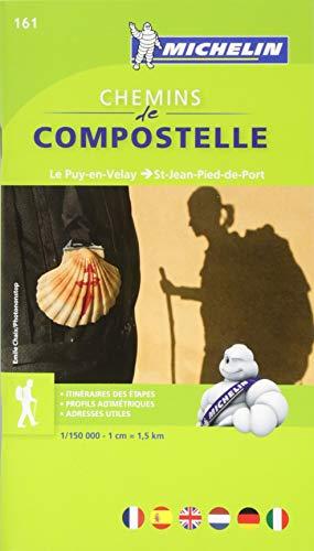 Carte ZOOM Chemins de Compostelle - Le Puy en Velay - St Jean Pied de Port par Collectif Michelin