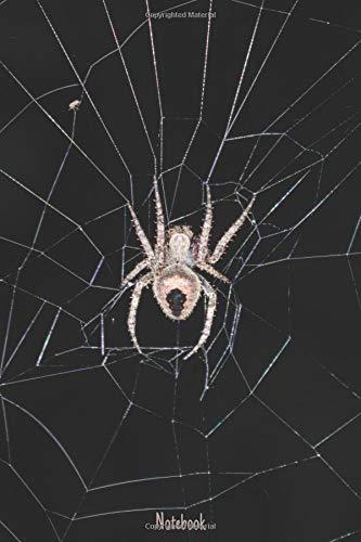 Notebook: Blanko Notizbuch mit schönem Spinnen Design für alle Spinnenfreunde & Spinnenliebhaber (Für Halloween Gruselig-designs)
