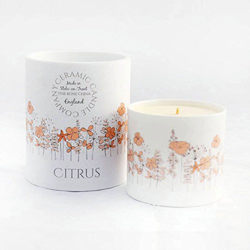 New Luxury Citrus candela di soia con China Holder