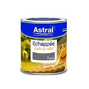 ASTRAL 5214374 Echappée sieste au soleil 0,5 L Criquet